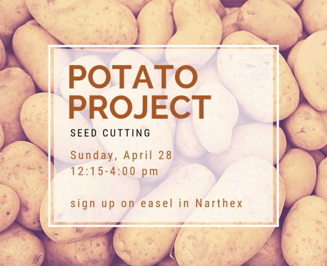 Potato Project