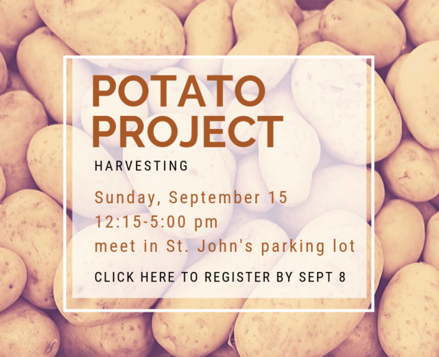 2019 Potato Project Harvest_web
